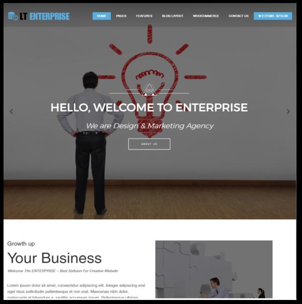 LT Enterprise – portfolio wordpress theme 2