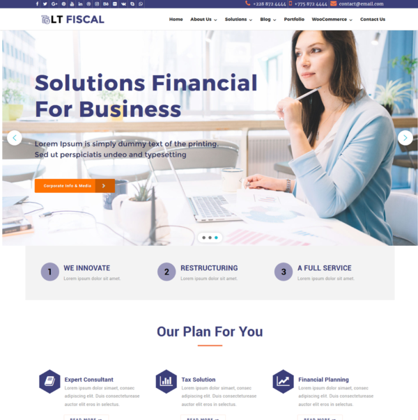 lt-fiscal-wordpress-theme