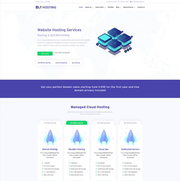 LT Hosting - Premium Server / Hosting WordPress theme 2
