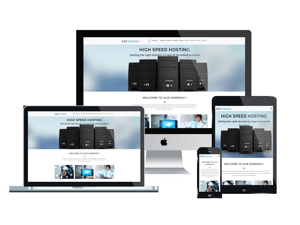 LT Storage - Responsive wordpress theme for hosting 2
