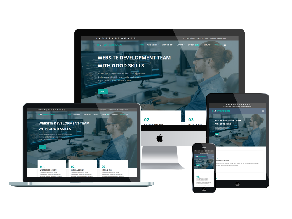 LT Web Design - Premium Web Development WordPress theme 2